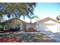 Photo of 12325 Yellow Rose Circle, RIVERVIEW, FL 33569 (MLS # T2909358)