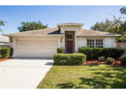 Photo of 1305 Lake Shore Ranch Drive, SEFFNER, FL 33584 (MLS # T2913322)