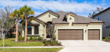Photo of 13818 Moonstone Canyon Drive, RIVERVIEW, FL 33579 (MLS # T2935575)