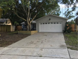 Photo of 2521 Doe Court, CLEARWATER, FL 33761 (MLS # U7823742)