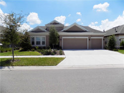 Photo of 6333 Voyagers Place, APOLLO BEACH, FL 33572 (MLS # U7830179)