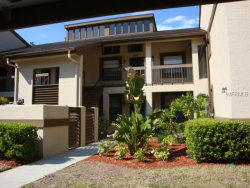 Photo of 119 Lindsay Lane, Unit 119, OLDSMAR, FL 34677 (MLS # U7848136)