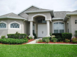 Photo of 13505 Barkingside Place, SPRING HILL, FL 34609 (MLS # U7849979)