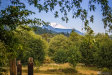 Photo of 4084 Mt Baker Hwy, Everson, WA 98247 (MLS # 1685624)