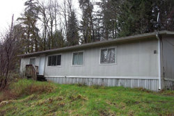 Photo of 4591 E State Highway 302, Belfair, WA 98528 (MLS # 740689)