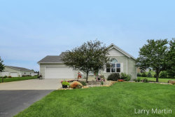 Photo of 3928 Sunset Vw, Wayland, MI 49348 (MLS # 17037848)
