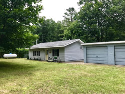 Photo of 2282 W Wolf Lake Boulevard, Baldwin, MI 49304 (MLS # 17041348)