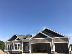 Photo of 3240 Box Elder, Jenison, MI 49428 (MLS # 17043524)