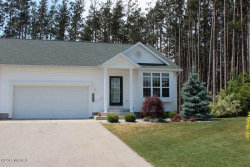 Photo of 5615 N Turning Leaf Way, Fruitport, MI 49415 (MLS # 17047421)