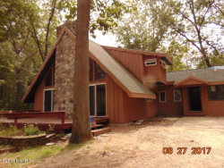 Photo of 5240 124th Avenue, Fennville, MI 49408 (MLS # 17051196)