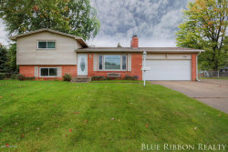 Photo of 7351 Walnut Avenue, Jenison, MI 49428 (MLS # 17051466)