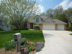 Photo of 7932 Finnagen Drive, Mattawan, MI 49071 (MLS # 17053701)