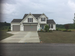 Photo of 12060 Harvest Home Drive, Lowell, MI 49331 (MLS # 17055084)