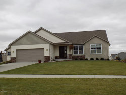 Photo of 6916 Groveside Drive, Zeeland, MI 49464 (MLS # 17057028)