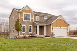 Photo of 9935 Myers View Drive, Rockford, MI 49341 (MLS # 17057727)