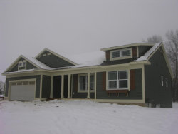 Photo of 9175 Nature Meadows Drive, Rockford, MI 49341 (MLS # 17058410)