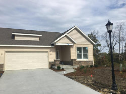 Photo of 10055 Prairie Grass Court, Unit #59, Zeeland, MI 49464 (MLS # 17058539)