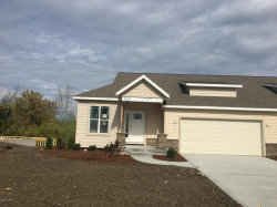 Photo of 10059 Prairie Grass Court, Unit #60, Zeeland, MI 49464 (MLS # 17058540)
