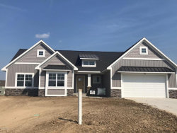 Photo of 1374 Shenandoah Drive, Unit 95, Zeeland, MI 49464 (MLS # 17058883)