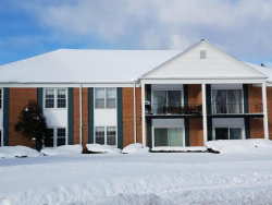 Photo of 2311 Wealthy Street, Unit 2, East Grand Rapids, MI 49506 (MLS # 18000632)