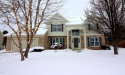 Photo of 8946 Compass Point Circle, Galesburg, MI 49053 (MLS # 18000887)
