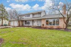 Photo of 2843 Belleglade Court, Grand Rapids, MI 49546 (MLS # 18001262)