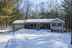 Photo of 374 Sagamore Trail, Lowell, MI 49331 (MLS # 18005394)