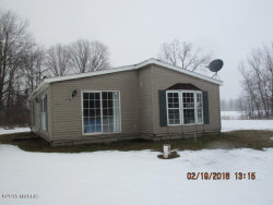 Photo of 36980 24th Street, Gobles, MI 49055 (MLS # 18005996)