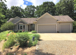 Photo of 26959 28th Avenue, Gobles, MI 49055 (MLS # 18006313)