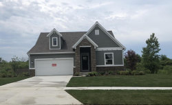 Photo of 7321 Winter View Drive, Byron Center, MI 49315 (MLS # 18009451)