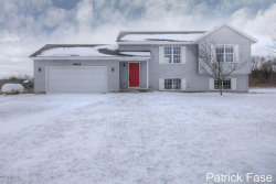 Photo of 10614 Country Aire, Rockford, MI 49341 (MLS # 18009530)