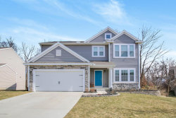 Photo of 11428 Cadence Court, Allendale, MI 49401 (MLS # 18009583)