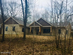 Photo of 8685 Greeley Court, Rockford, MI 49341 (MLS # 18013243)