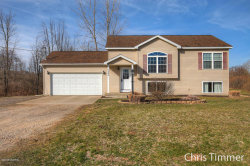Photo of 4380 Meadow Creek Lane Lane, Dorr, MI 49323 (MLS # 18016680)