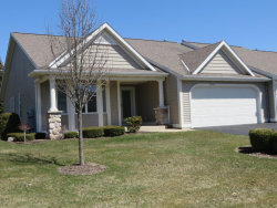 Photo of 1648 High Pointe Drive, Zeeland, MI 49464 (MLS # 18016691)