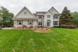 Photo of 8355 Brandon Circle, Mattawan, MI 49071 (MLS # 18017490)
