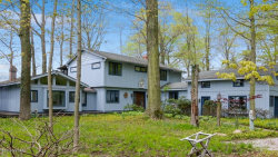 Photo of 2602 Lakeshore Drive, Fennville, MI 49408 (MLS # 18020872)