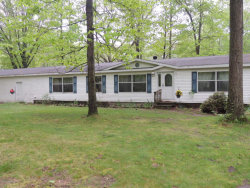 Photo of 5342 116th Avenue, Fennville, MI 49408 (MLS # 18023088)