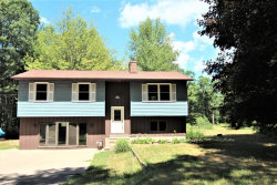 Photo of 13915 State Road, Nunica, MI 49448 (MLS # 18029075)