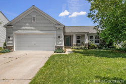 Photo of 8524 Haystack Road, Caledonia, MI 49316 (MLS # 18032824)