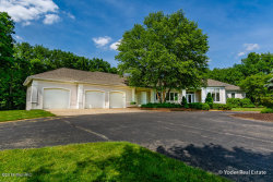 Photo of 5975 Sierra Ridge Drive, Caledonia, MI 49316 (MLS # 18033056)