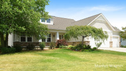 Photo of 7698 Broadview Drive, Caledonia, MI 49316 (MLS # 18033849)