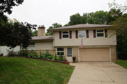 Photo of 1175 Meadowlane Drive, Kentwood, MI 49508 (MLS # 18038736)