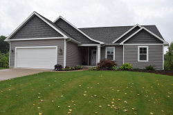 Photo of 3226 Brianna Street, Walker, MI 49534 (MLS # 18038806)