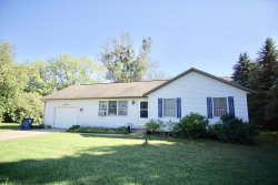 Photo of 14092 Lincoln Street, Grand Haven, MI 49417 (MLS # 18043851)