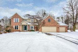 Photo of 7968 Ashwood Drive, Ada, MI 49301 (MLS # 18044416)