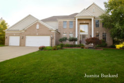 Photo of 7357 Crystal View Drive, Caledonia, MI 49316 (MLS # 18045404)