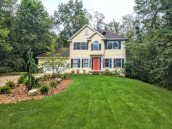 Photo of 5260 Crooked Bay Court, Lowell, MI 49331 (MLS # 18046775)