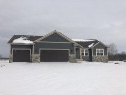 Photo of 6932 84th Avenue, Zeeland, MI 49464 (MLS # 18055713)