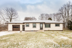Photo of 2716 Elmridge Drive, Walker, MI 49534 (MLS # 19000284)